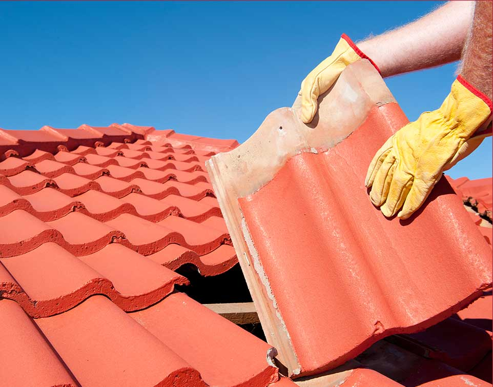 roofer holding shingle