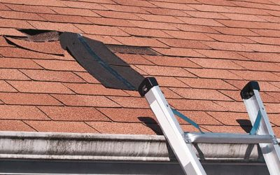 Time To Inspect Your Roof