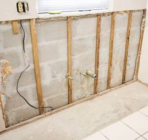 Mold Remediation Contractor discusses Steps to Remove Mold from Home