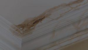 Repairing Water Damaged Ceiling